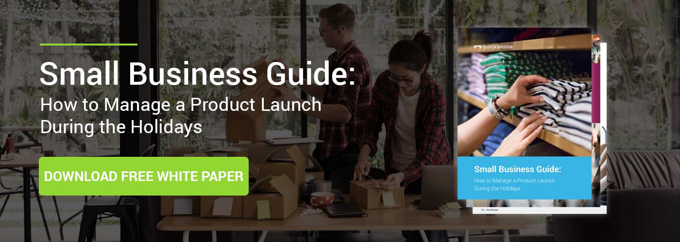Holiday product launch guide download